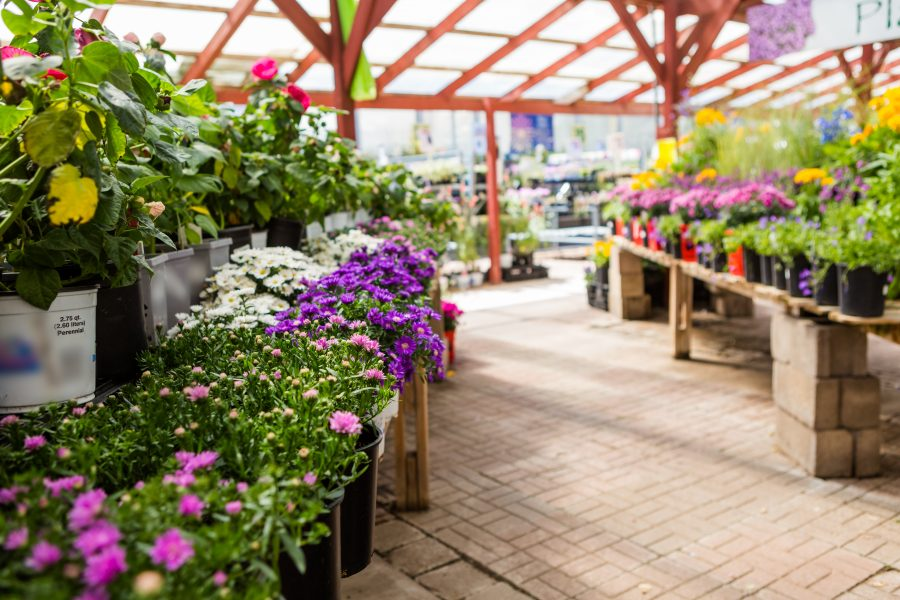 Mincoffs act on garden centre sale